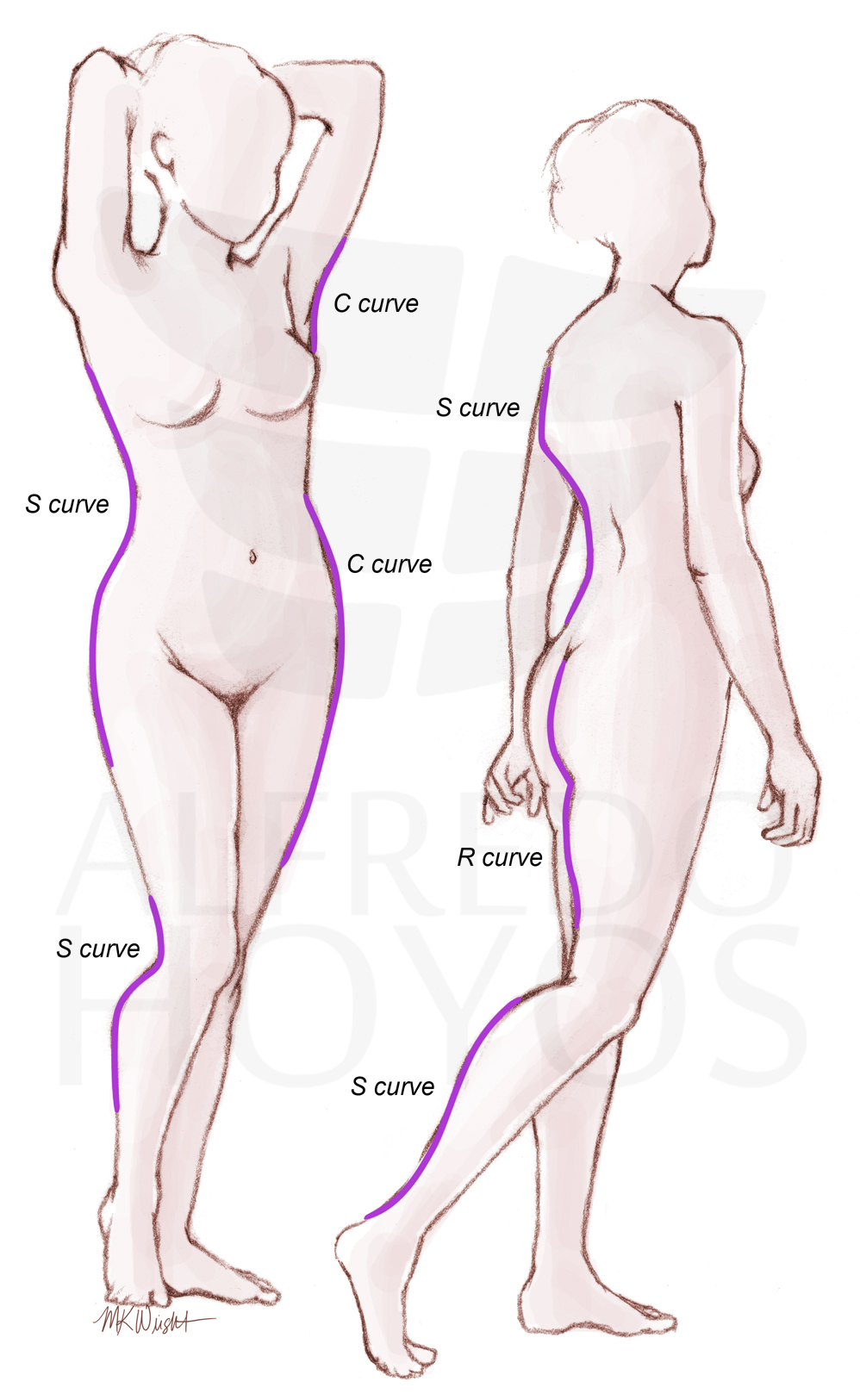 female body Adult